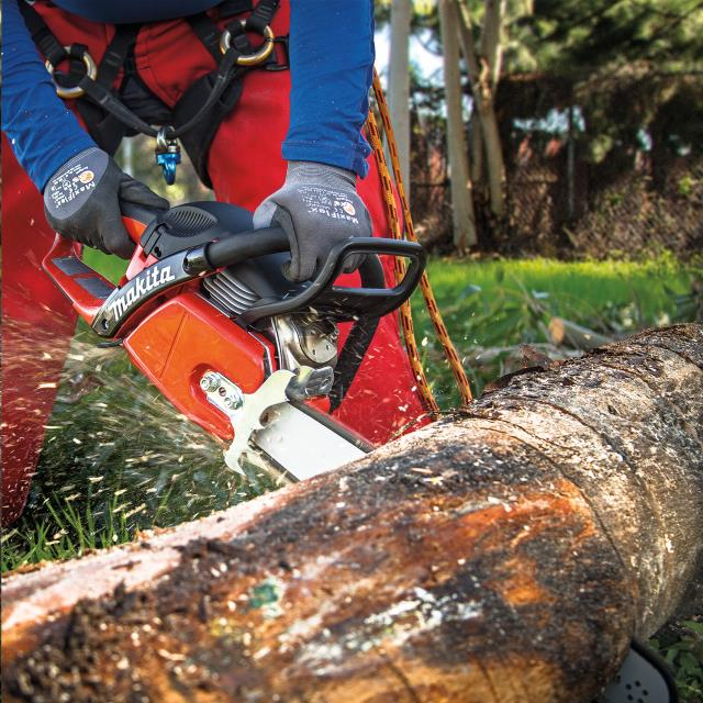 Where to find Makita 18  50CC Gas Powered Chain Saw in Kaneohe